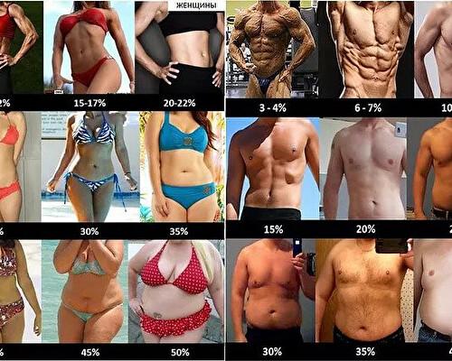 Как рассчитать лишний вес и избыток жира в организме