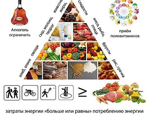 Как питаться правильно? Как рассчитать калорийность блюд? Что такое водный баланс организма? Сколько белков, жиров и углеводов должен содержать дневной рацион? Что такое пирамида питания?